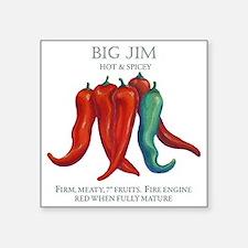 "BIG JIM copy Square Sticker 3"" x 3"""