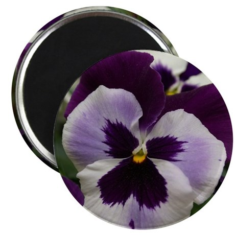 PurplePansyShower Magnet