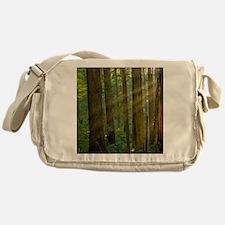 Humboldt Rays thru Redwoods Messenger Bag