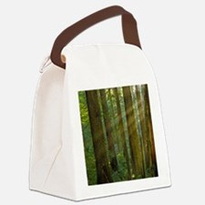 Humboldt Rays thru Redwoods Canvas Lunch Bag