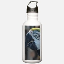 723x1326 Water Bottle
