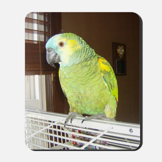 Amazon Parrot1100x1500 Mousepad