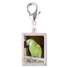 Amazon Parrot1100x1500 Silver Portrait Charm
