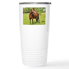 Bay Beauty Travel Coffee Mug