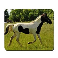 Spotted Horse Mousepad