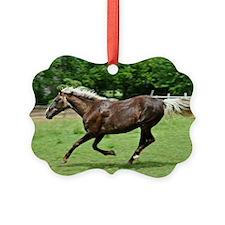 Rocky Way Ornament