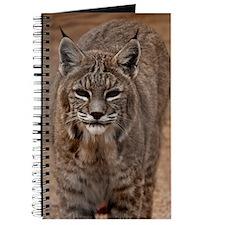 (11p) Lynx 5214 Journal