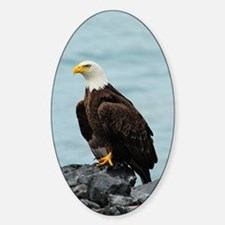 TabletCases_eagle_4 Decal