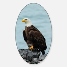 TabletCases_eagle_4 Sticker (Oval)