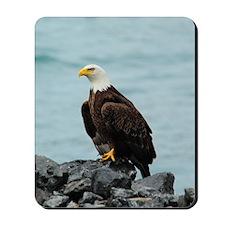 TabletCases_eagle_4 Mousepad