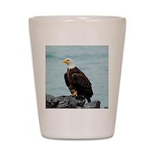 TabletCases_eagle_4 Shot Glass
