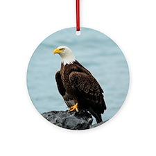 TabletCases_eagle_4 Round Ornament