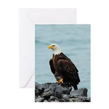 TabletCases_eagle_4 Greeting Card