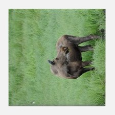 TabletCases_moose_3 Tile Coaster