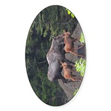 TabletCases_moose_5 Decal