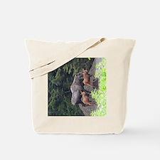 TabletCases_moose_5 Tote Bag