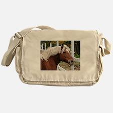 Be Haffie Messenger Bag