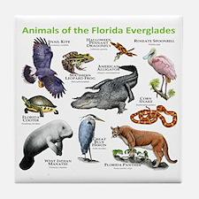 Animals of the Florida Everglades Tile Coaster