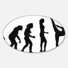Evolution Eiskunst C 1c Decal