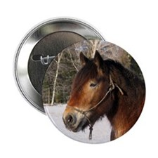"""Jutland 2"" 2.25"" Button (10 pack)"