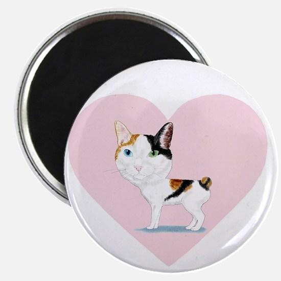I_Love_Japanese_Bobtails_transparent_white Magnet