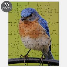 1100x1500eastern bluebird Puzzle