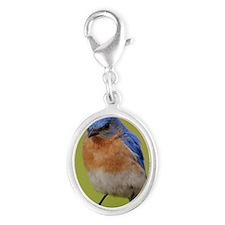 1100x1500eastern bluebird Silver Oval Charm