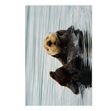 TabletCases_seaotter_2 Postcards (Package of 8)