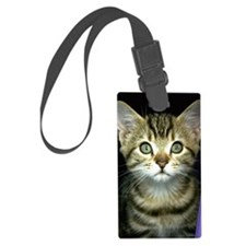 iphone_3g kitten curtain Luggage Tag