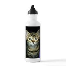 iphone_3g kitten curta Water Bottle
