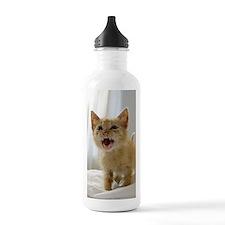 iphone_3g roar Water Bottle