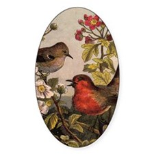 robins Decal
