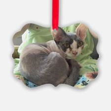 PIXIE - DEVON REX Ornament
