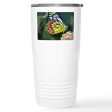 DSC_0283 Travel Mug