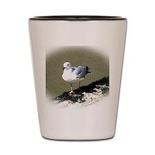Seagull1 Shot Glass