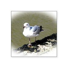 """Seagull1 Square Sticker 3"""" x 3"""""""