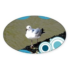 Seagull6 Decal