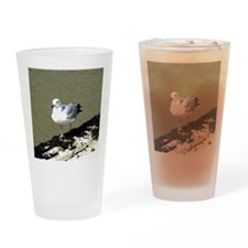 026 Drinking Glass