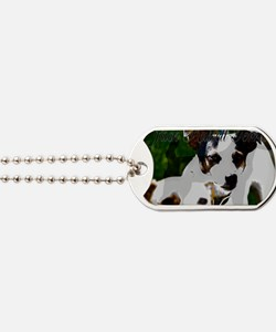 Jack Russell Terrier Dog Tags