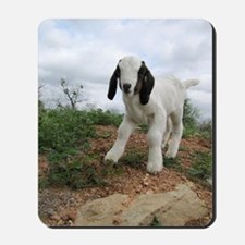 Kid Goat On Hill Mousepad