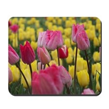 Pink and Yellow Tulips Mousepad