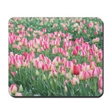Pink and White Tulips Mousepad