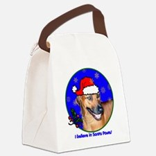 rhodesianridgebackxmas-shirt Canvas Lunch Bag
