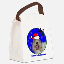 pbgvxmas-shirt Canvas Lunch Bag