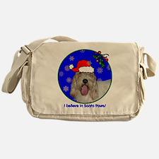 pbgvxmas-shirt Messenger Bag