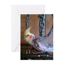 1100x1500 cockatiel 3 Greeting Card
