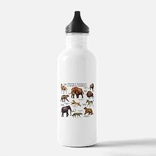 Extinct Animals of North America Water Bottle