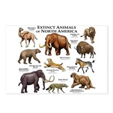 Extinct Animals of North America Postcards (Packag