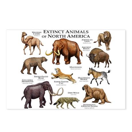 Extinct Animals of North America Postcards (Packag