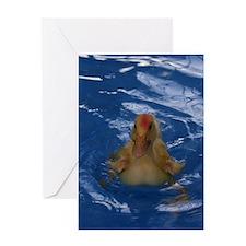 Uriel the Pekin Duck Greeting Card